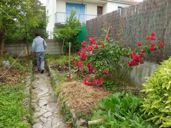 Blog de leparadisvert17 page 2 le paradis vert 17 - Amenagement d un petit jardin de ville ...