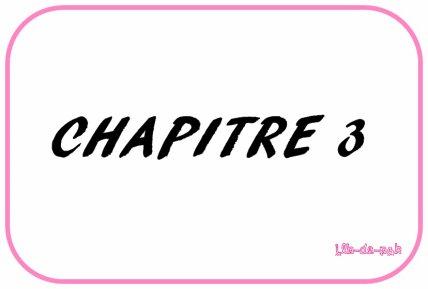 » CHAPITRE 3.