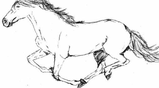 Dessiner un cheval au galop - Dessiner un cheval facilement ...