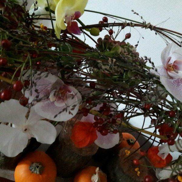 Fruits secs d automne cours chez Francoise Vandonink