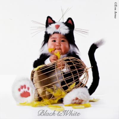 un chat qui a mang un oiseau mdrrrrrrrr que des images de b b. Black Bedroom Furniture Sets. Home Design Ideas