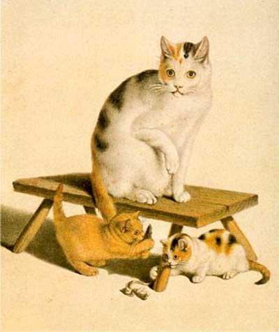 Le chat domestique � l'origine de la civilisation ?