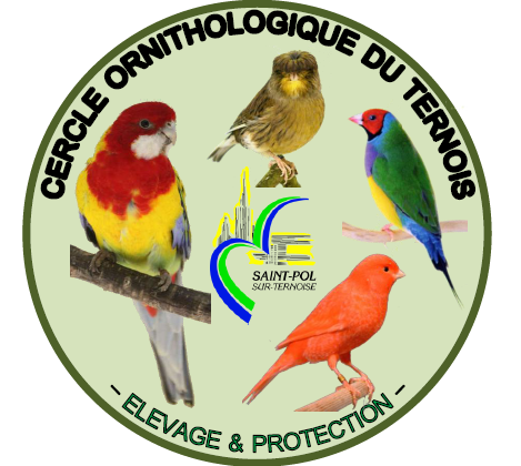 Cr�ation par Jean Louis  d'un logo pour le club
