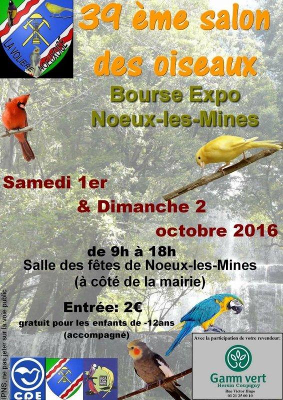 Concours de Noeux les mines r�gion 8