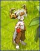 Team-Ox-Otomai