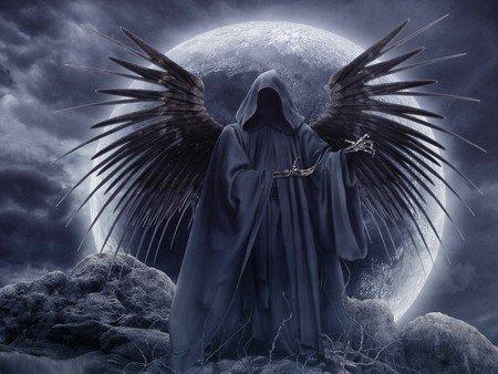 L ange de la mort blog de malicia 56 - Cuisiner trompette de la mort ...