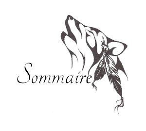 Sommaire One Shot (OS)