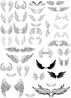 Transferts ailes d 39 ange blog de transpolymeres - Tatouage aile d ange homme ...