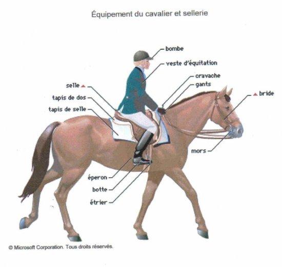 equipement du cavalier et sellerie le galop d 39 un cheval est la libert de l 39 me. Black Bedroom Furniture Sets. Home Design Ideas