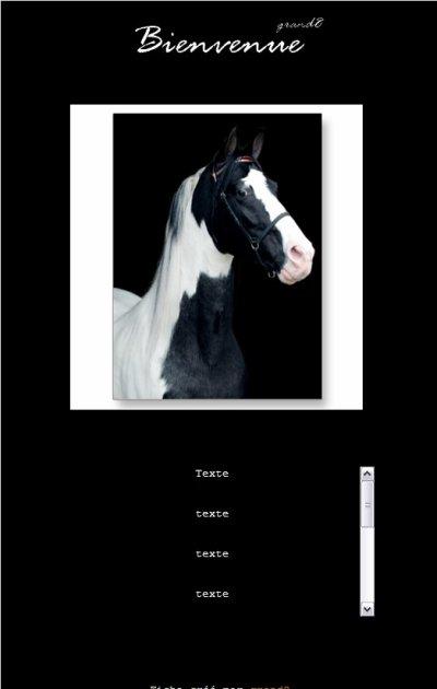 """3# """"Cheval noir et blanc"""""""