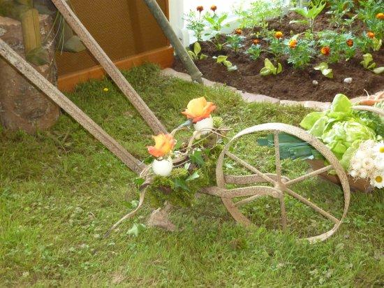 Le coin du jardin blog de knautie des champs for Au coin du jardin
