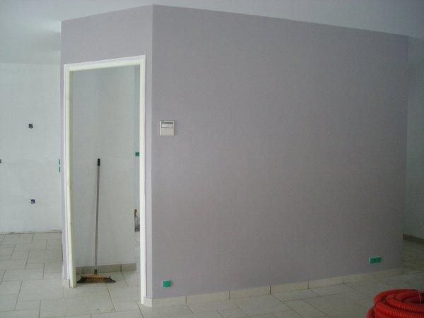 Peinture du salon s jour gris mauve blanc blog de for Peinture grise salon