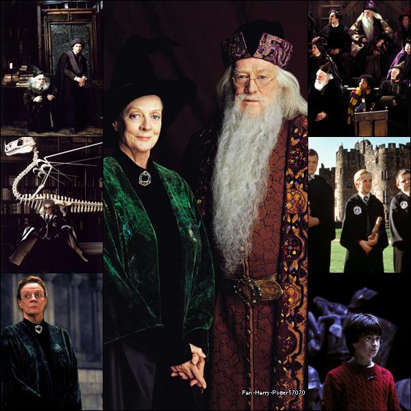 Blog de fan harry potter57070 page 4 je jure - Harry potter 8 et les portes du temps bande annonce ...