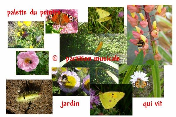 merveilles du jardin.