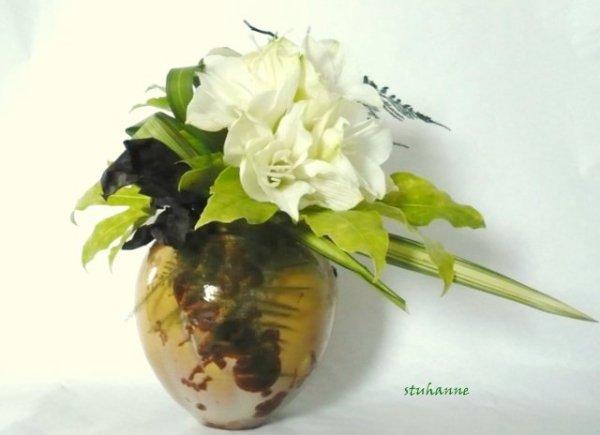 Amaryllis art floral bouquets et compositions florales de for Mon amaryllis ne fait que des feuilles