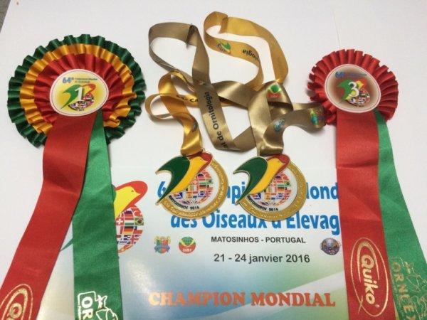 Mes titres au Championnat Mondial de Matosinhos-Portugal
