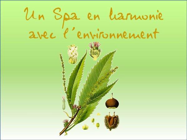 Un SPA en harmonie avec l environnement