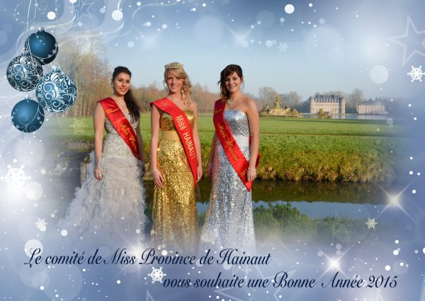 2015-01-01-TOURNAI - BONNE ANNEE