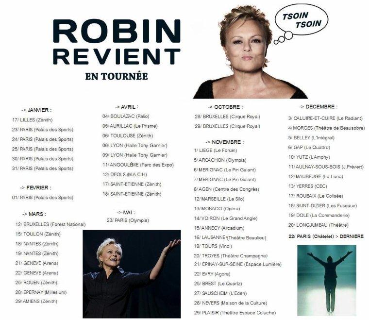 """""""ROBIN REVIENT"""" : Tourn�e en France, Suisse, Belgique. [Novembre 2013 - D�cembre 2014] + Sortie DVD."""