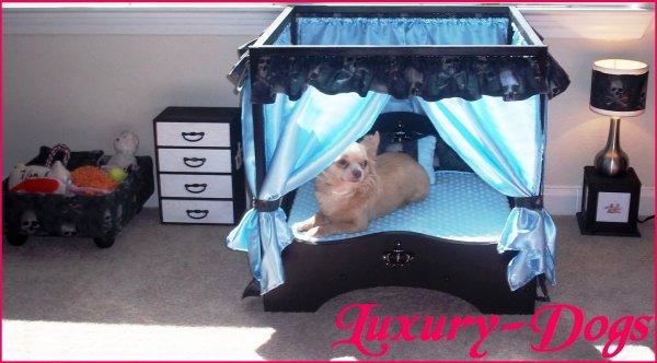 Chambre Pour Chien : votre chien pourra y trouvé tous ses petits jouets préférés