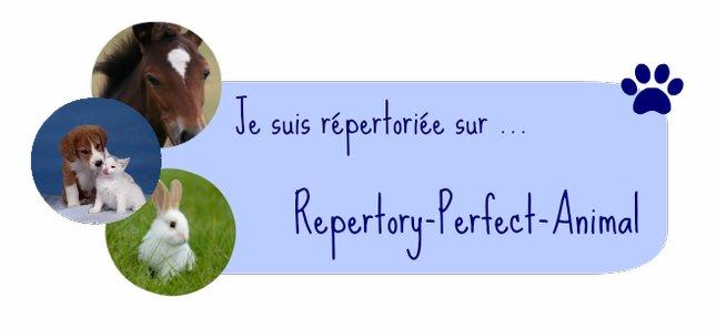 repertory