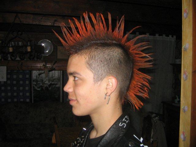 blog de crete-un-punk - punk is not dead