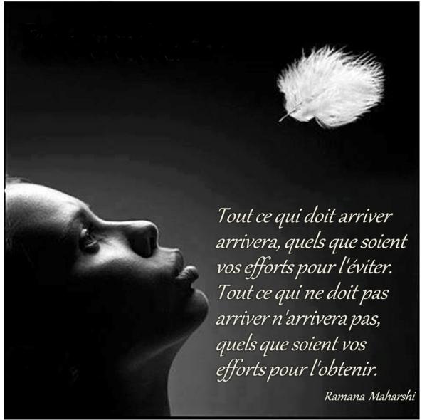 Extraordinaire Citation Bouddha Amour &RV49 | Aieasyspain &EX_83