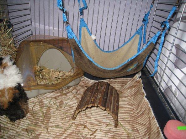 articles de cochonsdinde67 tagg s maison de toilette. Black Bedroom Furniture Sets. Home Design Ideas