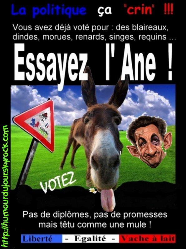 NE VOTEZ PAS POUR L'ANE