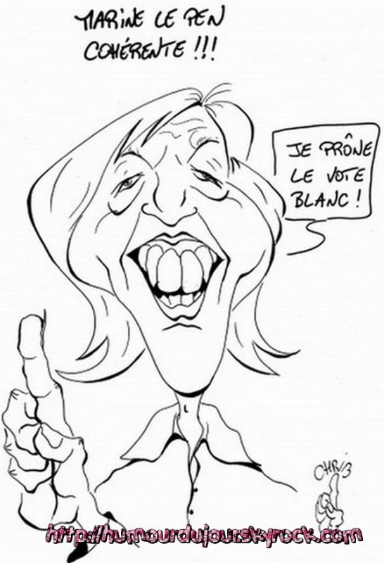 LA FRANCE BLEU MARINE