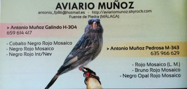 Anuncio Aviario Mu�oz