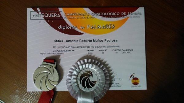 Campeonato de Espa�a 2014