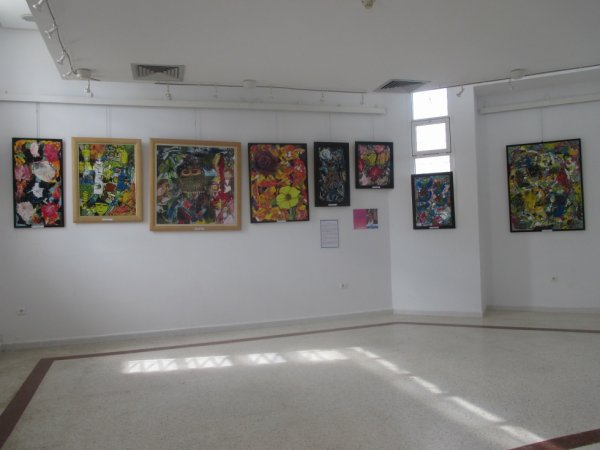 VUE D'UNE EXPO A MY DRISS
