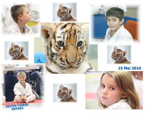 "ORTHEZ Dimanche 15 Mai 2016 ""Petits Tigres"""