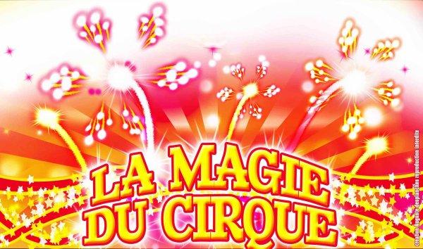 Au cirque Zanetti, venez vivre toute La magie du cirque !