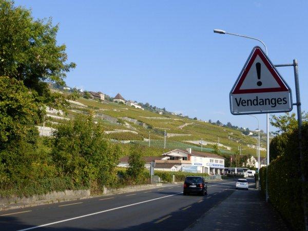 d�salpes en Suisse 8