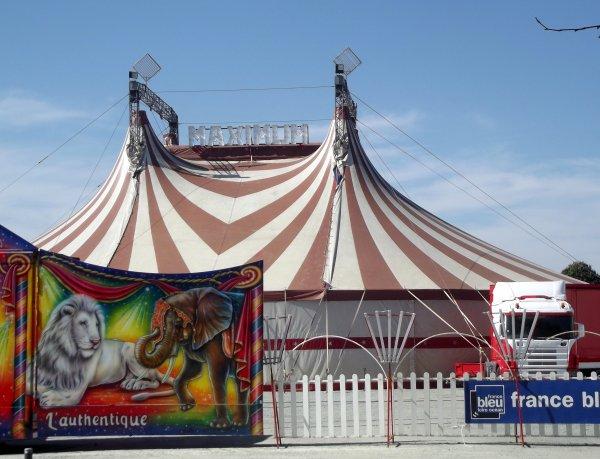 Cirque Maximum � La Roche sur Yon Septembre 2016 (4)
