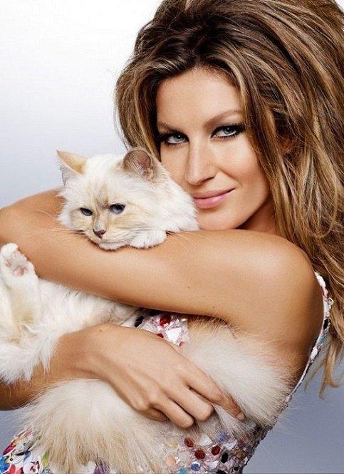 Si vous �tes digne de son affection, un chat deviendra votre ami mais jamais votre esclave. ― Th�ophile Gautier