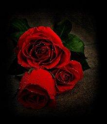 ♥   RIHANNA ♥ - - -  ♥ KISS  IT  BETTER ♥ NEWS ♥ AVRIL  2016   ♥
