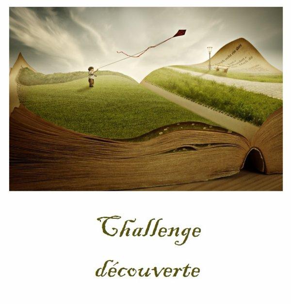 Chalenge découverte