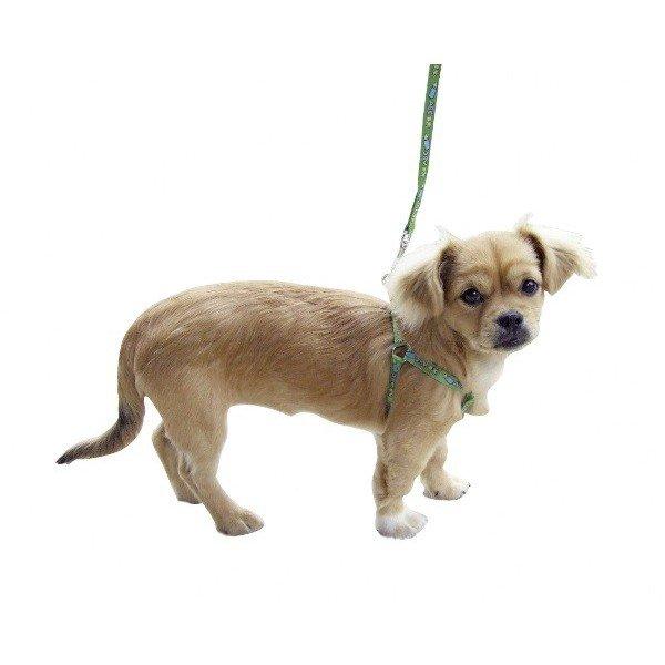 Blog de conseils-chiens - Conseils sur nos amis les CHIENS