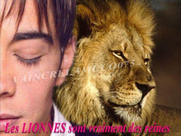 Les lionnes sont vraiment des reines ... merci Greg
