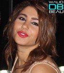 Album Tayr El Hob / ╚►Mohema Rasmeya 2♥11 مهمة رسمية (2011)