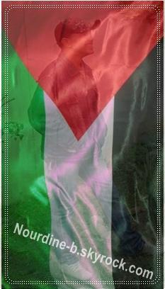 Ensemble pour Palestine