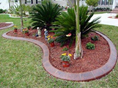 Espace vert jardinage fleurs plantes gazon bordure pour for Plante pour bordure dallee