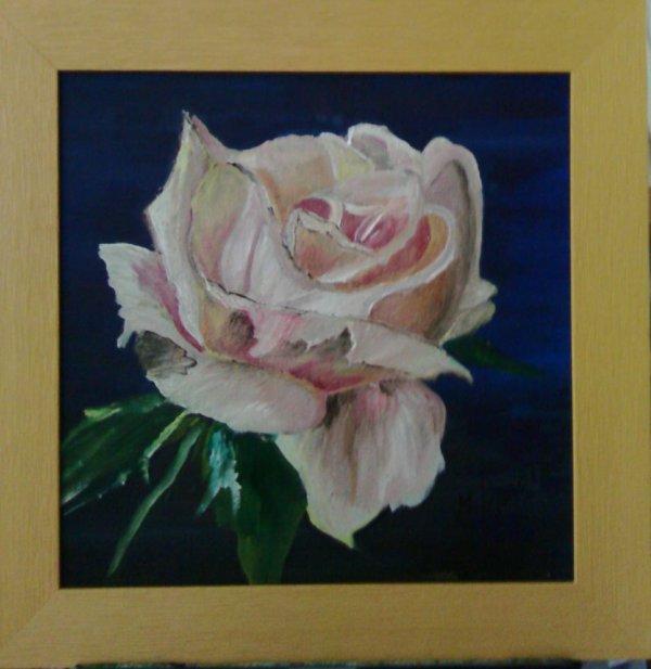 Rose romantique : peinture � l'huile 30X30 : 40%