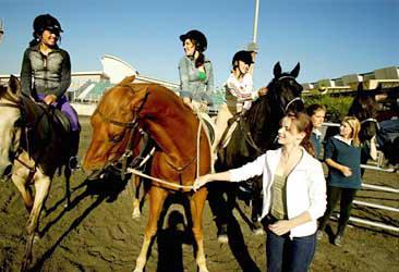 Blog de clubgrandgalop serie grand galop - Grand galop le cheval volant ...