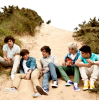 1D-DreamBecomeReality