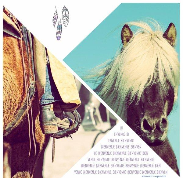 """""""Le cheval est un bon maître, non seulement pour le corps, mais aussi pour l'esprit et le c½ur."""" 🐎"""