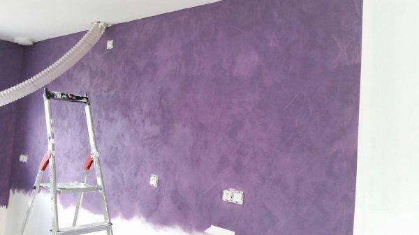 Peinture du salon et de la cuisine une sleeve pour une renaissance for Peinture violet salin